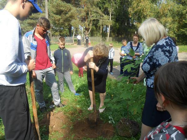 «Классный лес» появился в Демидовском районе