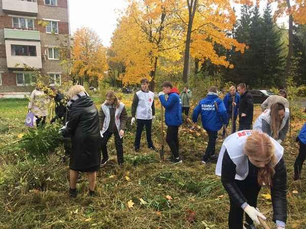 Жители Сафоновского района присоединились к экологической акции по посадке деревьев
