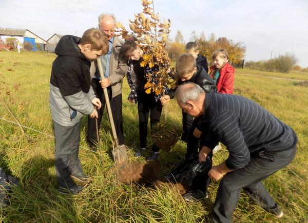 Пришкольные территории села Новодугино пополнились тремя десятками деревьев